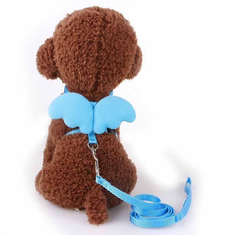Designer Angel Wing Dog/puppy Leash and Collar Adjustable Harness Set-Safety-as the picture shows - blue-XS-Pets Hub Home