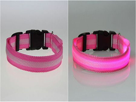 Dog LED Safety Glow Collar-Safety-Pink-L-Pets Hub Home