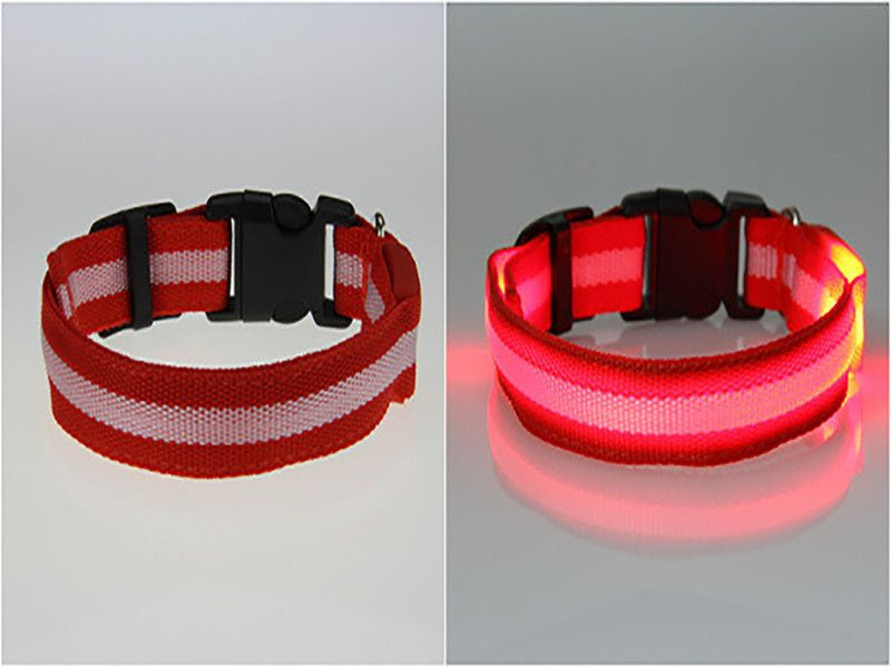 Dog LED Safety Glow Collar-Safety-Red-L-Pets Hub Home