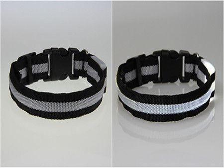 Dog LED Safety Glow Collar-Safety-White-L-Pets Hub Home
