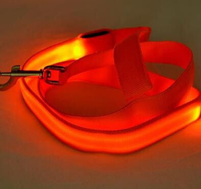 Dog LED Safety Glow Leash-Safety-Orange-Width 25mm-Pets Hub Home