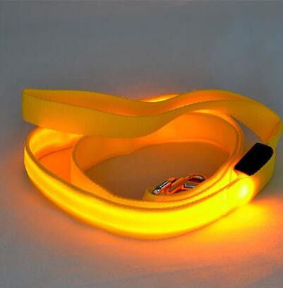 Dog LED Safety Glow Leash-Safety-Yellow-Width 25mm-Pets Hub Home