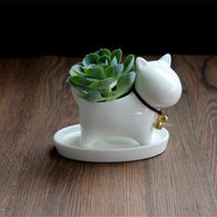 Lucky Bonsai Ceramic Dog, Succulent Planter Pot-Themed Gifts-Pets Hub Home