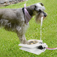 Pet Water Fountain - Fun Toy + Fresh Drinking Water-Accessories-White-Pets Hub Home