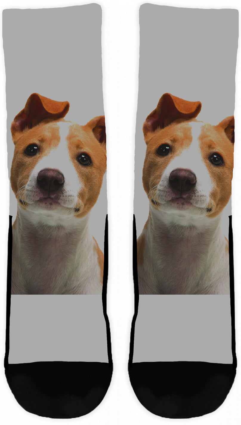 PUP Crew Socks-socks-Crew Socks - White-Small/Medium-Pets Hub Home