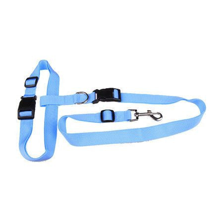 Sport Hands Free Running Adjustable Waist Dog Leash-Safety-Blue-Pets Hub Home