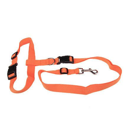 Sport Hands Free Running Adjustable Waist Dog Leash-Safety-Orange-Pets Hub Home