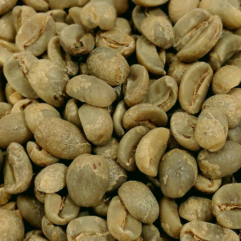 Haiti Blue Pine Forest Green Coffee