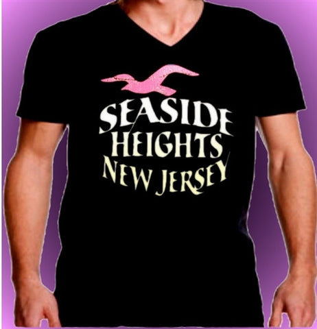 Seagull Seaside Heights V-Neck 473