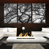 3 piece/set natural scenery oil canvas printed painting wall art picture home decor for living room No Framed