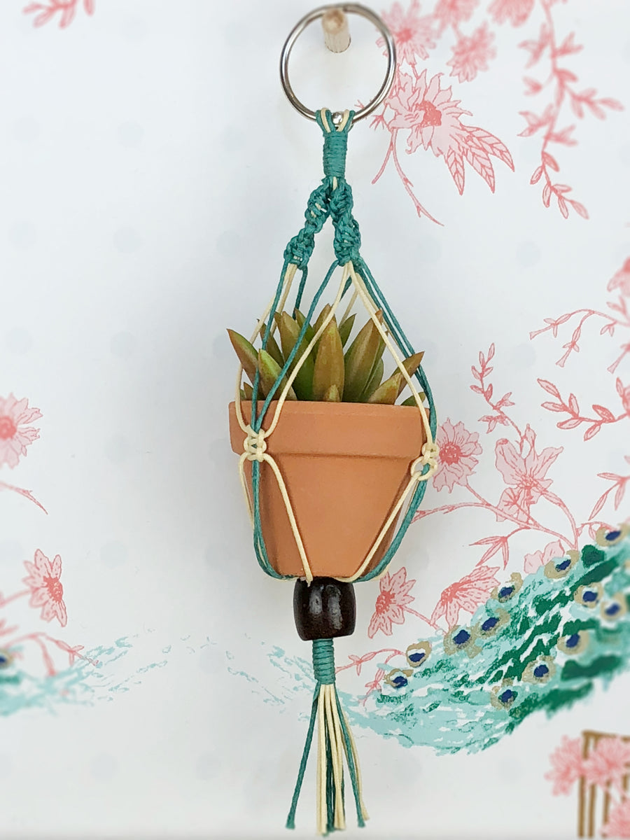 Mini Macrame Plant Ornament - Blue Colorway