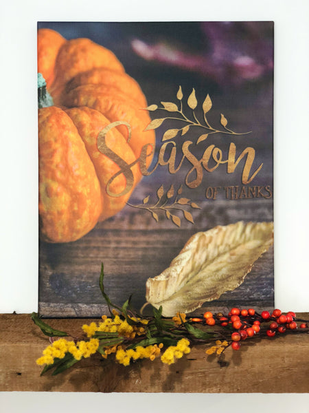 Season Of Thanks Pumpkin Stretched Art Canvas