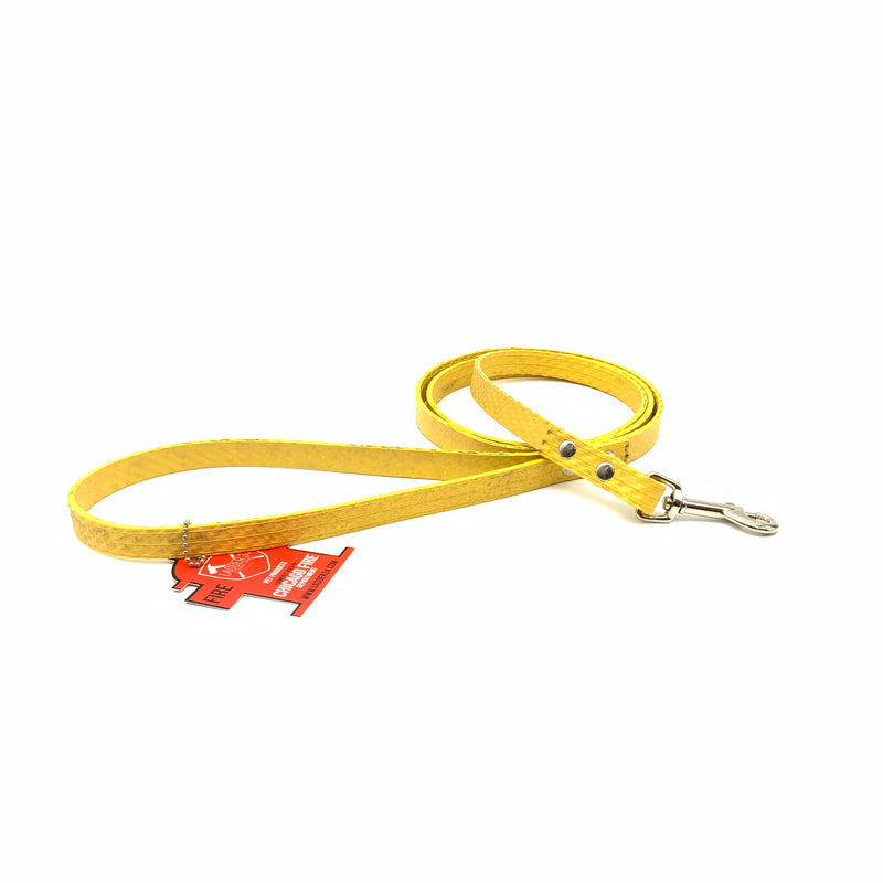 Fire hose dog leash