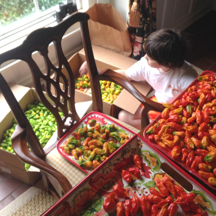 Behind the Scenes: Our Midland Ghost Pepper Sauce