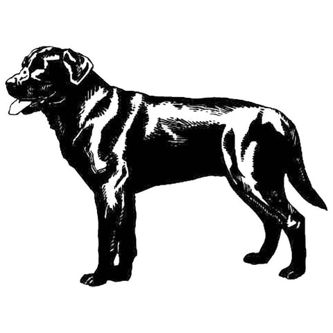Standing Profile Labrador Retriever Car Sticker