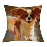 Cavalier King Charles Spaniel Cushion Cover