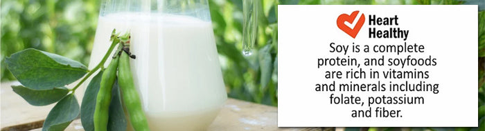 Soy Milk Made From Whole Tiger Soybeans