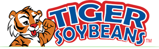 Tiger Soybeans
