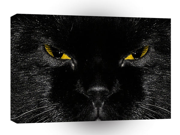 Abstract Animal Cats Eye Yellow A1 Canvas