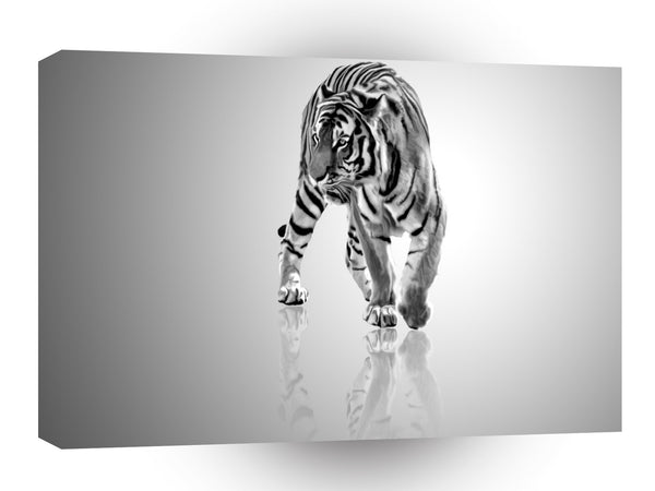 Abstract Animal Tiger Mirror A1 Canvas