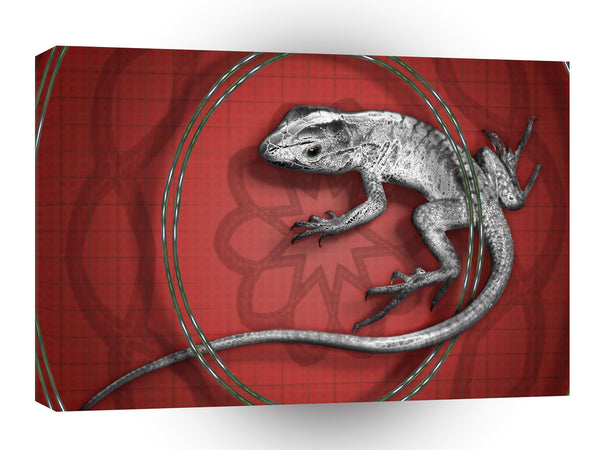 Abstract Animals Grey Lizard Tail A1 Canvas