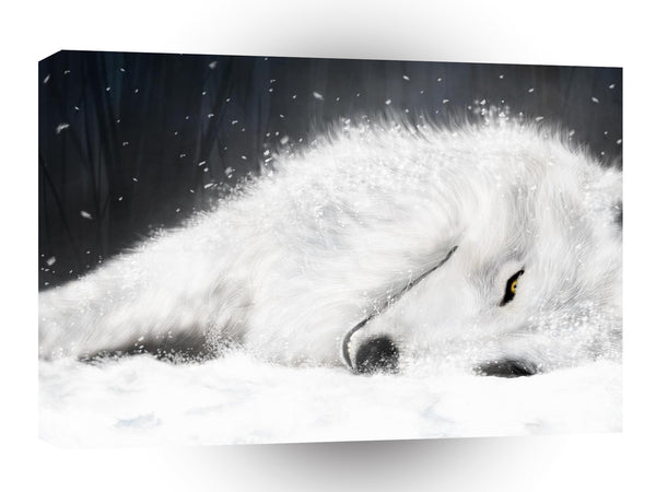 Abstract Animals Sleeping Wolf A1 Canvas