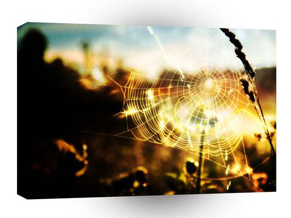 Abstract Cool Wheat Webs Of Fire A1 Xlarge Canvas