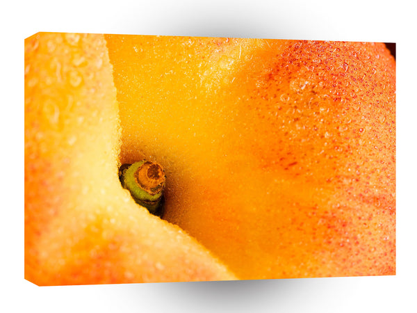 Abstract Everyday Peach Core A1 Xlarge Canvas
