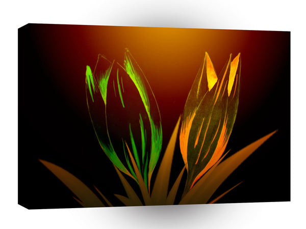 Abstract Flower Colours Of The Tulip A1 Xlarge Canvas