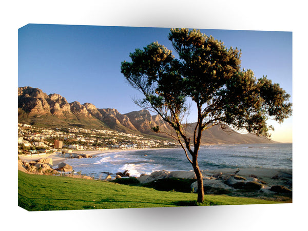 Africa Cape Town South A1 Xlarge Canvas