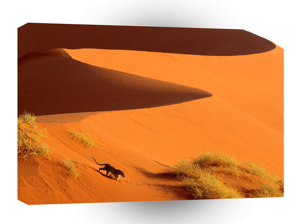 Africa Crossing The Dunes Of Sossusvlei Park Namibia A1 Xlarge Canvas