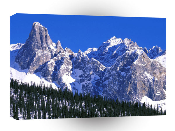 Alaska Brooks Mountain Range A1 Xlarge Canvas