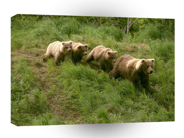 Bears Treasure Hunt Alaska A1 Xlarge Canvas