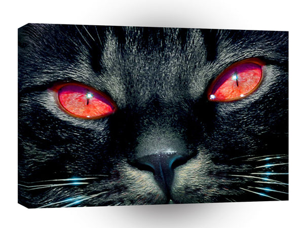 Cat Black Red Eyes A1 Xlarge Canvas