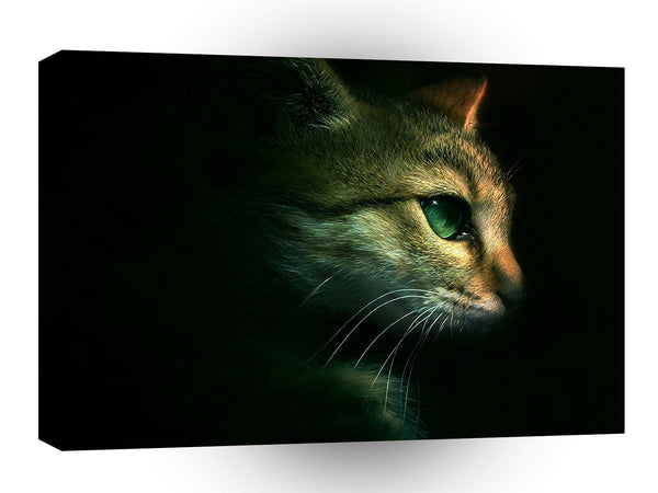 Cats Eye Of The Pousse A1 Xlarge Canvas