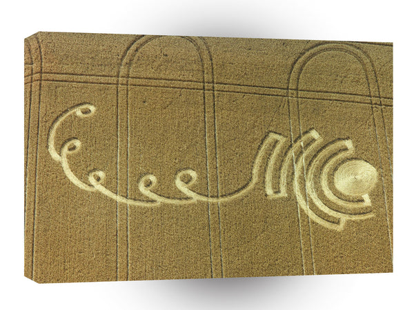 Crop Circle Winterbourne Stoke 1995 A1 Xlarge Canvas