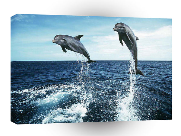 Dolphin Leap Of Faith A1 Xlarge Canvas