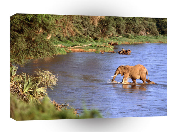 Elephant African The Crossing A1 Xlarge Canvas