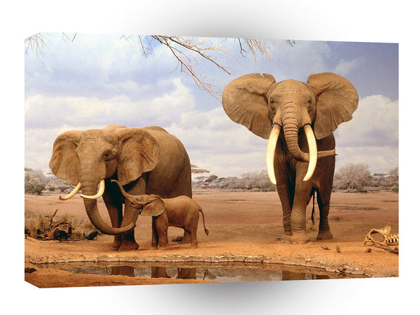 Elephant Are We There Yet A1 Xlarge Canvas