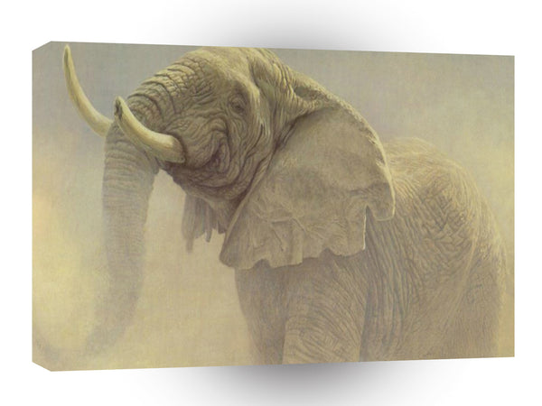 Elephant Bluffing Bull A1 Xlarge Canvas
