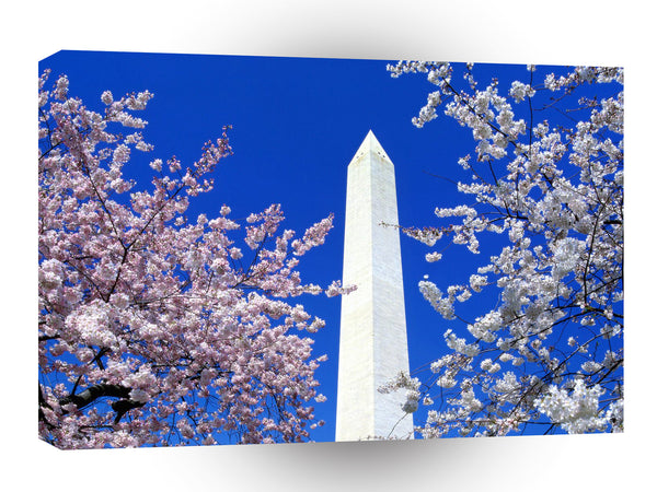 Famous Landmarks Cherry Blossoms Monument A1 Xlarge Canvas