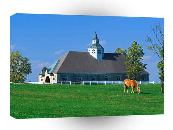 Farms And Barns Donamire Horse Farm Lexington Kentucky A1 Xlarge Canvas