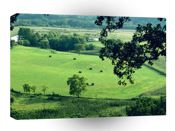 Farms And Barns Fertile Farmland Trace Parkway Tennessee A1 Xlarge Canvas