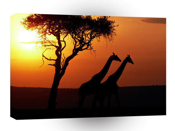 Giraffe Long Walk Goodnight A1 Xlarge Canvas