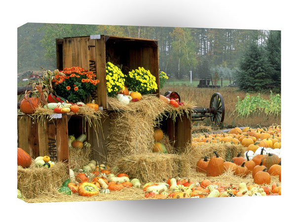 Halloween Autumn Roadside Manistee County Onekama Michigan A1 Xlarge Canvas