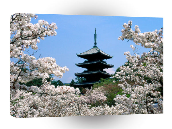 Japan Cherry Blossoms Ninna Ji Temple Grounds Kyoto A1 Xlarge Canvas