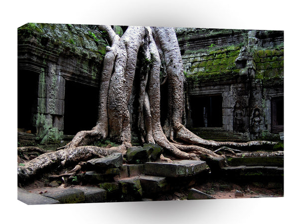 Landscape Old Tree Temple A1 Xlarge Canvas