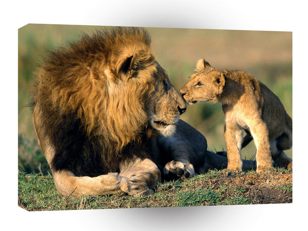 Lion Family Kisses A1 Xlarge Canvas
