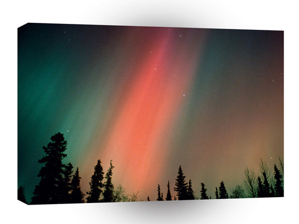 Nature Forces Aurora Borealis Northern Lights Alaska A1 Xlarge Canvas