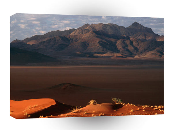 Nature Forces Dawn Namib Desert Namibia A1 Xlarge Canvas
